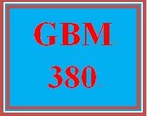 GBM 380 Week 4 WK 4 Team Project - Feasibility Study