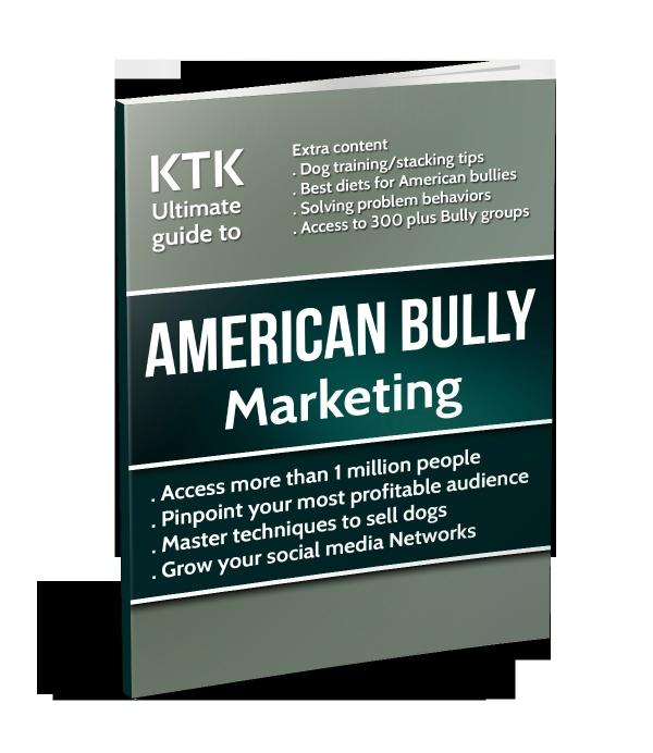 American Bully Marketing Guide