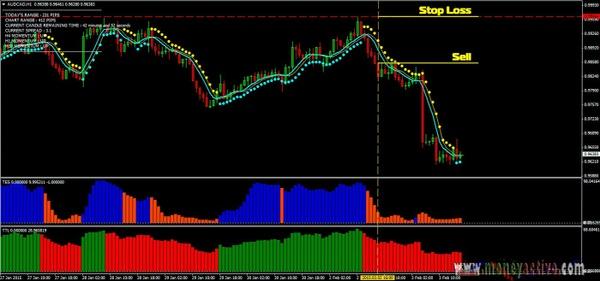 Nueva ciencia de Forex Trading