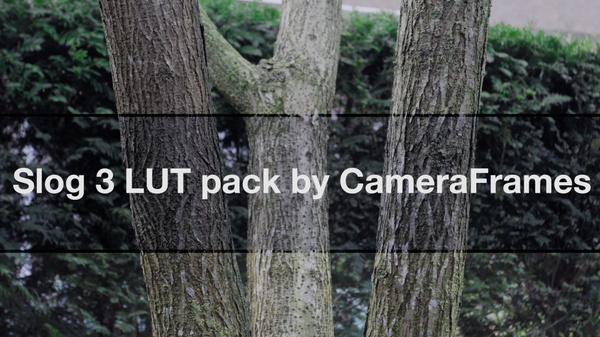 Slog3 LUT pack by CameraFrames