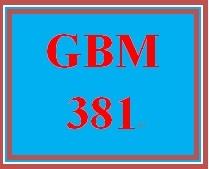 GBM 381 Week 4 Operational Analysis