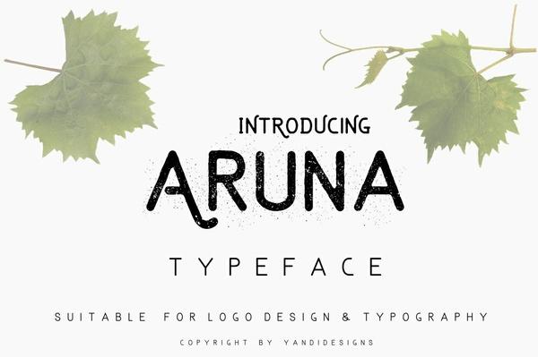Aruna Typeface - PWYW