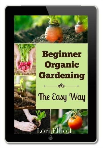 Beginner Organic Gardenin