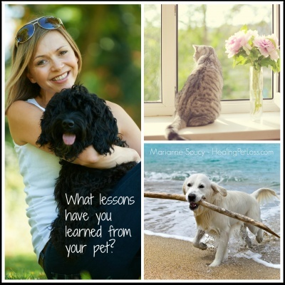 Receive a Message from YOUR Pet in the Afterlife via a Sacred Spirit Journey
