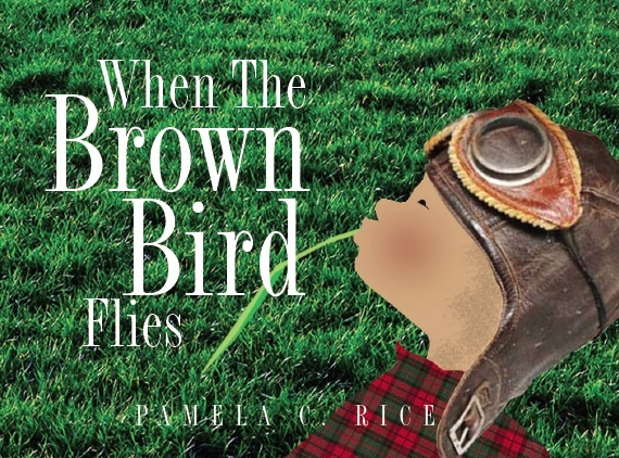 When The Brown Bird Flies - Ages 4 - 8