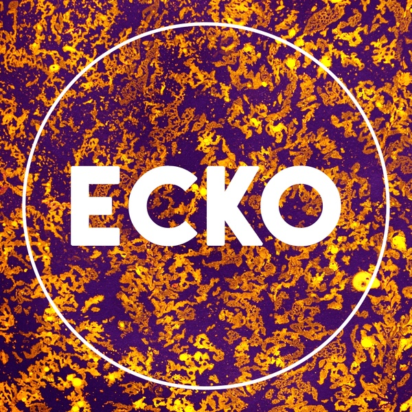 Ecko Magazine Issue One