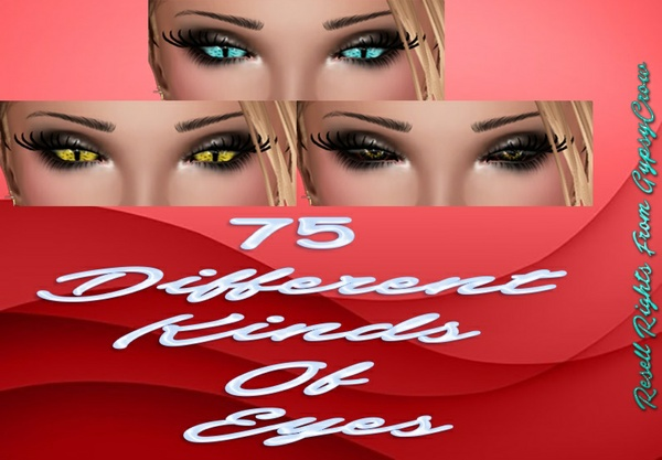 75 Different Kinds Of Eyes