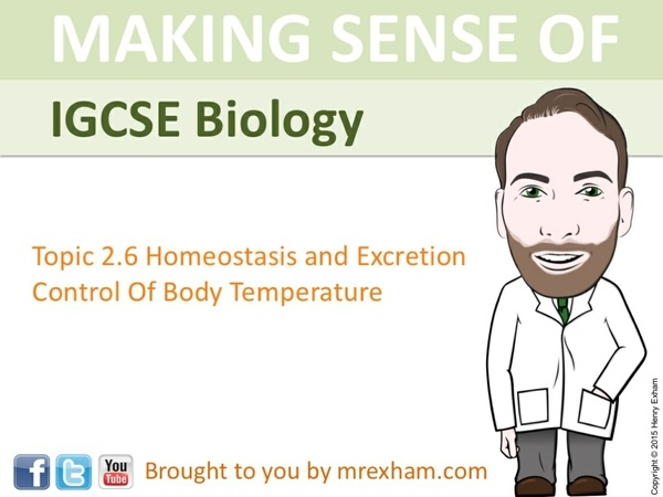 IGCSE Biology - Control of Body Temperature Presentation