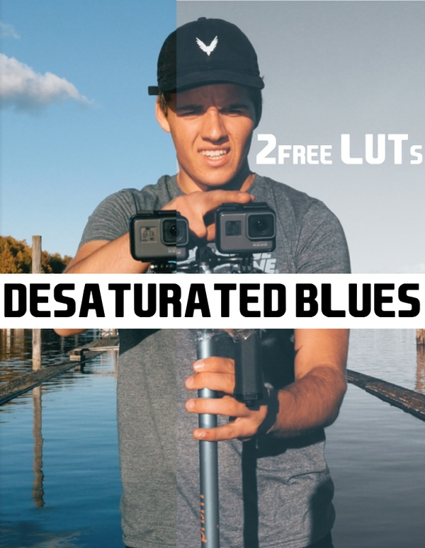 FREE TRAVEL LUT // Desaturated Blue // SAM KOLDER INSPIRED LUT
