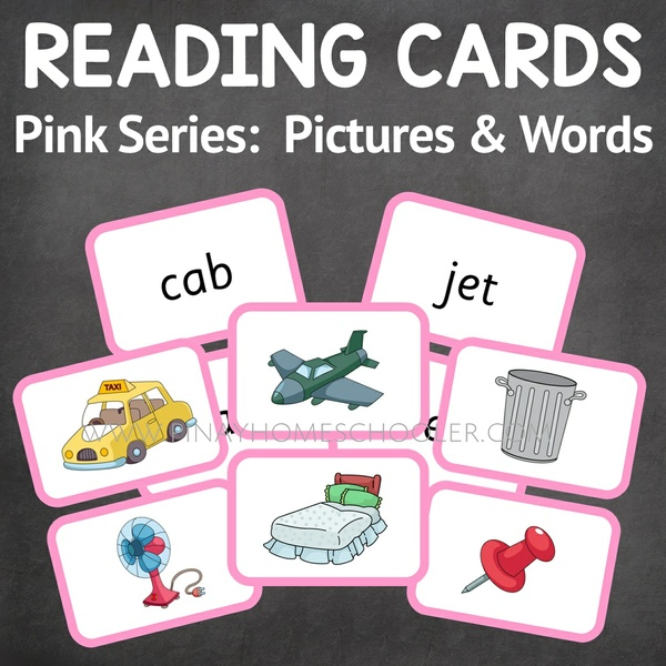 100 Montessori Language Pink Series Cards