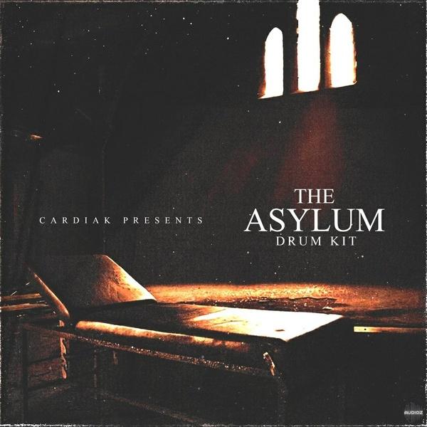 The Asylum Drum Kit