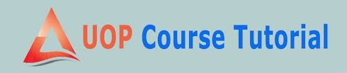 BUS 475 Entire Course | Latest Version | A+ Study Guide