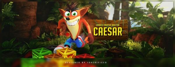 Twitter Header Template: Crash Bandicoot Themed PSD