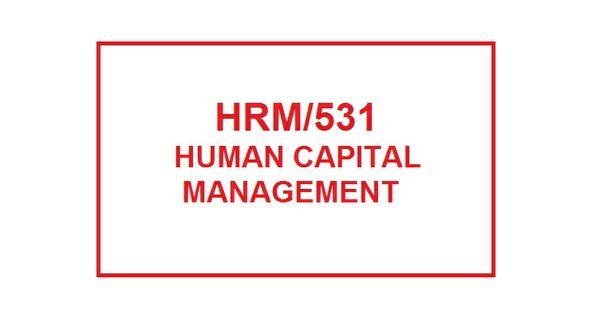 HRM 531 Week 3 Knowledge Check