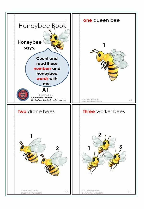 BOOKLET - READER: HONEYBEE'S COUNTING BOOK VOLUME 6 JEANETTE VUUREN: 4a WHITE BACKGROUND
