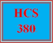 HCS 380 Week 2 Financial Statement Components