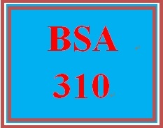 BSA 310 Entire Course