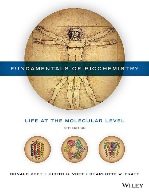 Information systems today managing the digital world fundamentals of biochemistry life at the molecular level 5th edition pdf instant download fandeluxe Images