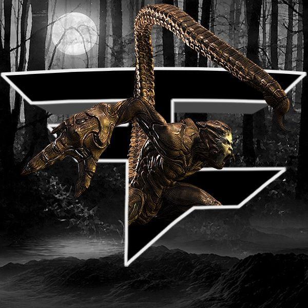 ASM-Scorpion TEMPLATE