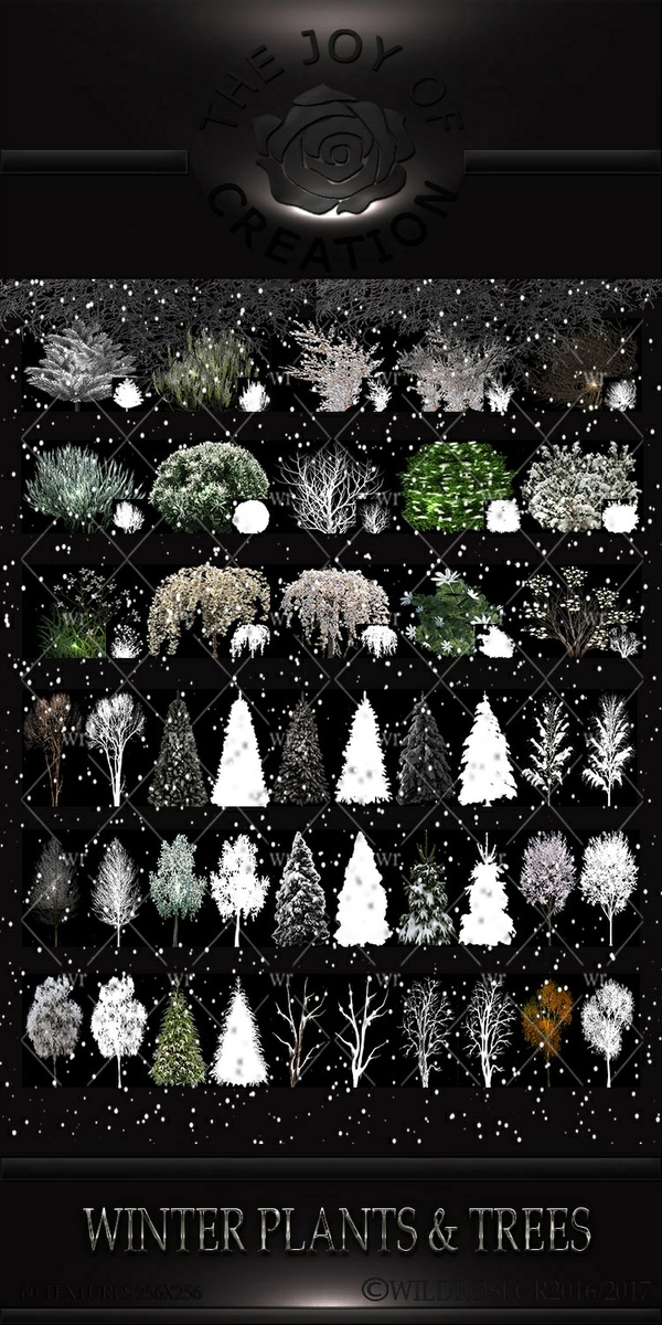 "WINTER TIME "" WINTER TRESS & PLANTS"""