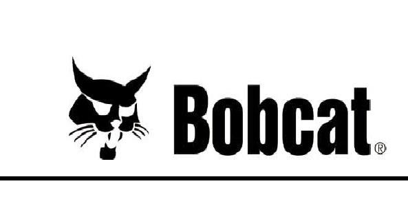 Bobcat Skid Steer Loader 444 , 500 ,& early 600 Service Supplement