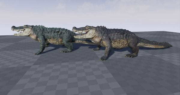 3D Realistic Crocodrile whit animations for Unreal Engine 4