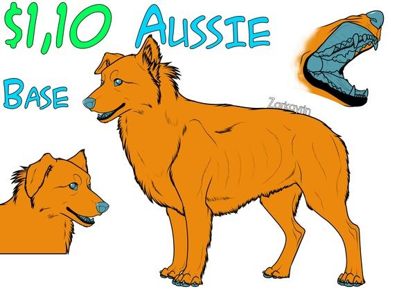 Australian shepherd base