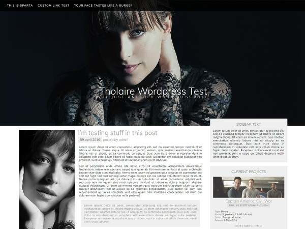 Subtle - Wordpress and Coppermine Theme Package