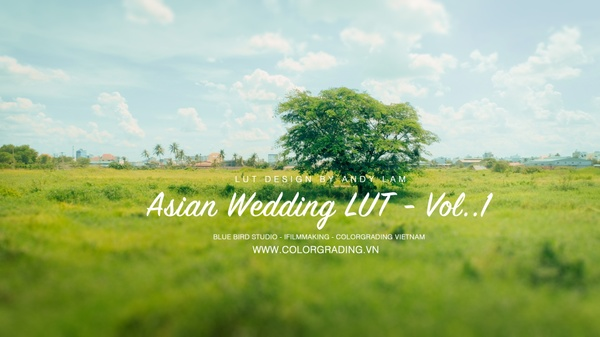 ASIAN BAMBOO WEDDING LUT PACK Vol.1