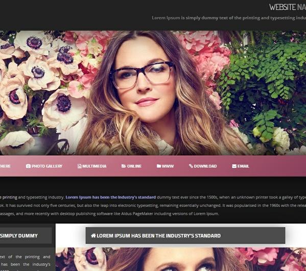 Wordpress Theme / Widget Ready Premade 02