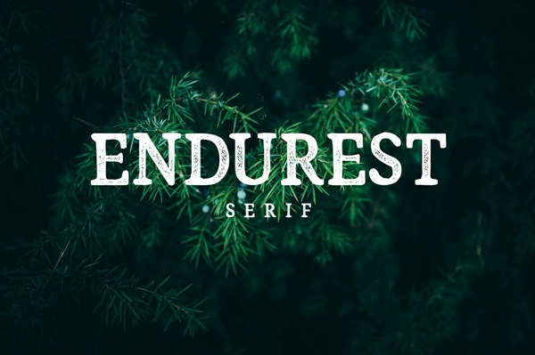 Endurest Font