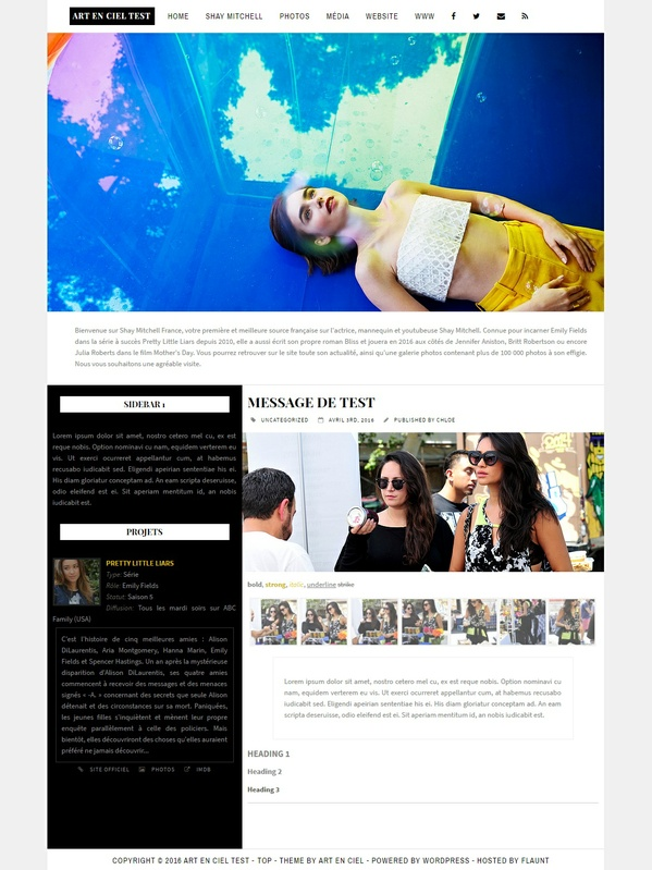 Wordpress Theme #01