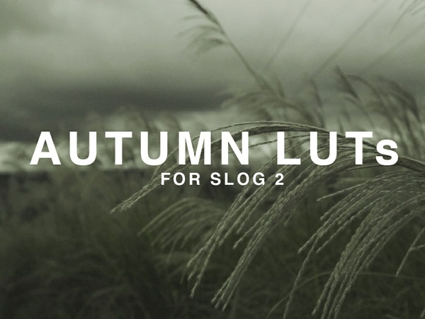 Autumn LUTs