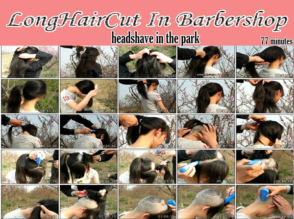 Headshave in the park