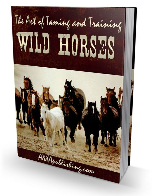 The Art of Taming and Training Wild Horses