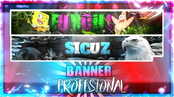 BANNER PROFESIONAL