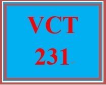 VCT 231 Week 1 Individual Premiere® Pro Workspace
