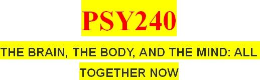 PSY240 All Weeks Assignments