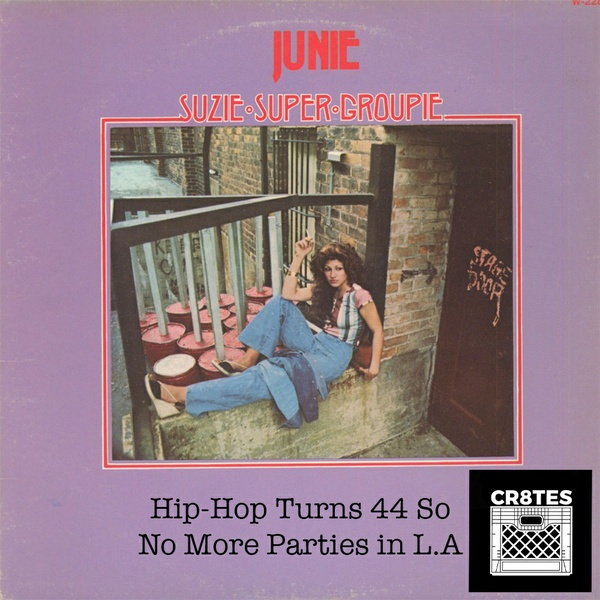 Hip Hop Turns 44 So No More Parties In La Kit