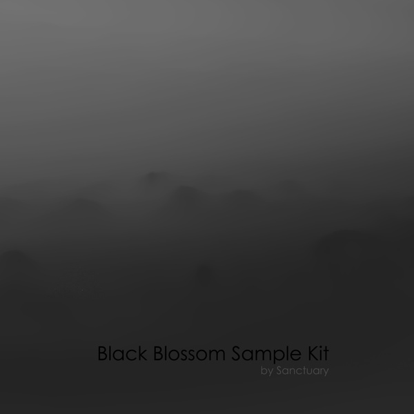 Black Blossom Samlpe Kit
