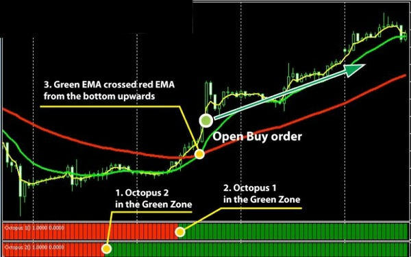 Forex Octopus System MANUAL TRADING SYSTEM MT4