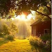 VIENO - Hyvää huomenta