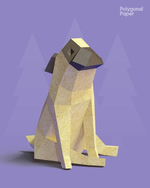 2D Pug Template RUS/ENG