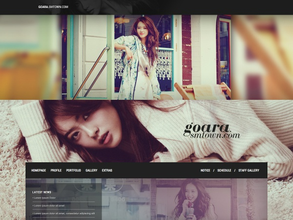 WordPress / Premium Theme #02