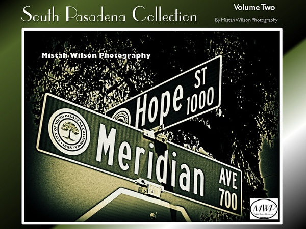 South Pasadena Collection Volume Two by Mistah Wilson Photography