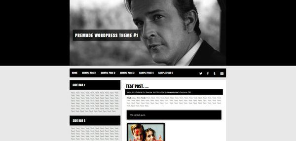 Premade Wordpress Theme #1