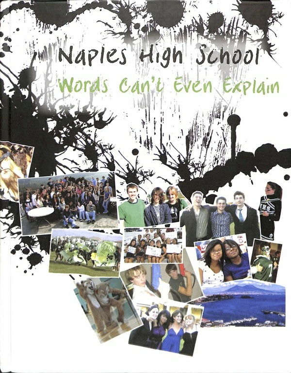 2008 Naples High School Log