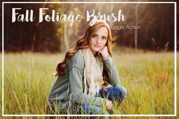 Fall Foliage Brush- Single Action