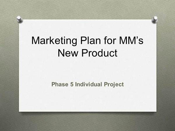 MKTG 630 Phase 5 Individual Project [14 Slides Detailed Speaker Notes]