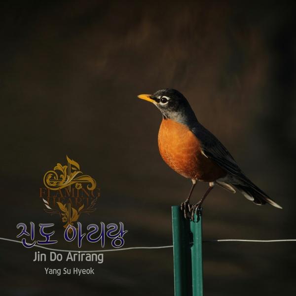 [Piano Cover] 진도 아리랑 / Jin Do Arirang - Yang Su Hyeok (양수혁)